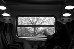 Train to Ravenna (Italy) (Levan Kakabadze) Tags: travel italy train book streetphotography ravenna
