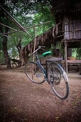 south africa - sud africa (riccardo_hoenner) Tags: southafrica bici bicicletta sudafrica