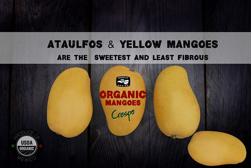 """Ataulfos, LEss Fiber More Sweet! • <a style=""""font-size:0.8em;"""" href=""""http://www.flickr.com/photos/139081453@N03/25796200625/"""" target=""""_blank"""">View on Flickr</a>"""