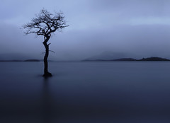 High and not dry (kenny barker) Tags: mist scotland loch trossachs lochlomond millarochybay