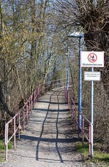 No alcohol! (:Linda:) Tags: germany thuringia town themar path railing shadow sign baretree alcohol curvy uphill