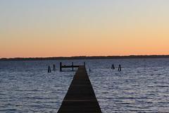 Long Pier (Gator Andress) Tags: wood water pier dock outdoor ripples posts stjohnsriver jacksonvillefl jacksonvilleflorida