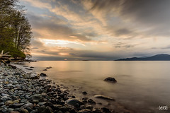 Sunset at Acadia Beach (Daniel's Clicks) Tags: