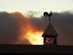 Cockerel (Tobymeg) Tags: sky weather clouds grey islands golden spain sundown panasonic canary cockerel ruby3 fz72