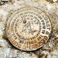 Another gem from Scotchman's Peak. #hikenorthidaho #ig_idaho #pnw #peakbagger #scotchmanspeak #peakbagging #visitidaho #hikes #hiking #hike #idahoexplored #idahoadventures #upperleftusa