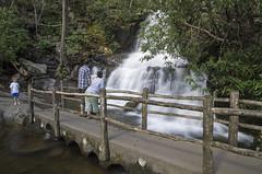 IMGPE19140_Fk - Great Smoky Mountain National Park - Laurel Falls (David L. Black) Tags: us unitedstates tennessee waterfalls sevierville greatsmokymountainsnationalpark