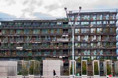 BNF Paris (arthemus2) Tags: city paris france architecture town bnf capitale cinma architexture divertissement parisjetaime parisstory