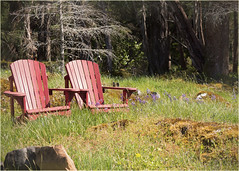 meanwhile, on top of a hillside (marneejill) Tags: flowers red wild two field chairs hillside picturesque adirondack