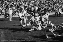 Rolling Down Hill (uselessbay) Tags: blackandwhite film sports canon football f1 1978 brownuniversity uselessbay canonf1 kodakektachrome100 ilfordpanfplus50 epsonperfectionv600 uselessbayphotography williamtalley dxofilmpack5