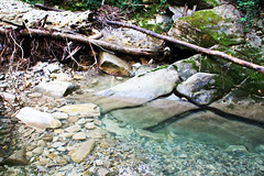 Mountain waters (grce) Tags: wild mountain nature water rock creek river landscape moss rocks outdoor roots geology