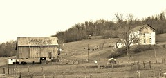 Barn and Hillside sepia (Neal3K) Tags: ohio field sepia barn rust
