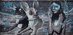 _4160807.jpg (chesneauolivier) Tags: streetart tallin graffitis estonie