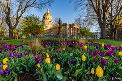 A Bunch- April 15, 2016 (zachary.locks) Tags: flowers blue trees sky plants building yellow sunrise garden golden spring colorful glow purple angle tulips vibrant flag group wide lot jackson charleston wv capitol westvirginia hour dome bunch bloom stonewall cloudless complex foreground cy365 zlocks