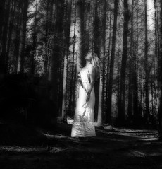 20160416_145555 (lisatonelisefagerland) Tags: art film norway vintage shadows hiking silhouettes norwegian haunting wilderness ghostly filmmaking thewoods theforest whitedress norwegianwood poetryandphoto sandvatn burmavegen artandfilm speakthroughphotography myownphotographer