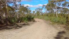 Para Wirra 39 (WEA Ramblers) Tags: hiking australia bushwalking southaustralia parawirra yattalunga fayharding