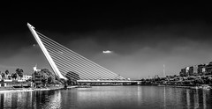 On The River, Seville (derek.dpr) Tags: bridge bw black reflection water monochrome reflections river mono sevilla spain noir waterfront dramatic olympus seville espana calatrava bianco nero omd cantilever em5