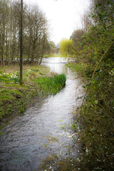 The River Dickler
