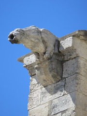 20150405 Vaucluse Avignon - Gargouilles (7) (anhndee) Tags: france church frankreich paca gargoyle avignon glise eglise gargouille vaucluse gargouilles provencealpescotedazur
