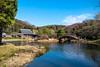 image (kozonagain) Tags: 日本 神奈川県 横浜市