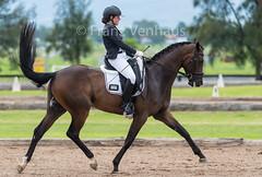 160117_Clarendon_9191.jpg (FranzVenhaus) Tags: horses sydney australia riding newsouthwales athletes aus equestrian supporters riders officials dressage spectatorsvolunteers