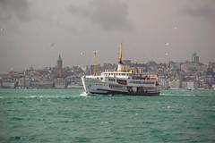 DSC_1597 (zeynepcos) Tags: winter sea seagulls tower ferry ship outdoor istanbul bosphorus galata