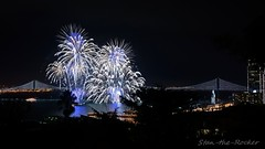 View from Coit Tower - Bay Lights Re-Lighting and Super Bowl City Fireworks Show - 013016 - 07 (Stan-the-Rocker) Tags: sanfrancisco sony coittower northbeach embarcadero ferrybuilding telegraphhill nex sanfranciscooaklandbaybridge sfobb sb50 baylights sel1855 stantherocker