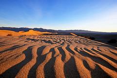 Mesquite Flat Dunes Sunrise, Death Valley (3) (Bob Palin) Tags: california usa southwest sunrise canon landscape nationalpark sand desert outdoor 100v10f deathvalley 100vistas instantfave betterthangood ashotadayorso mesquiteflatdunes orig:file=2016012604320