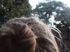 8/366 Horizon (JessicaBelotto) Tags: trees hair horizon days honey fotografia projeto cabelo horizonte árvores fotográfico coque fotografando 366 366daysofhoney 366diasnoano