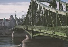 Budapest - Side Bridge (chrisbastian44) Tags: bridge green iron europe european pov steel budapest structure pylon pointofview hungry buda pest easterneurope rivercrossing bridging bridgethegap famousbridges