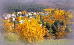 Autumn in the village (Stella VM) Tags: autumn trees mountain colour beautiful forest landscape village bulgaria  vitosha            murchaevo