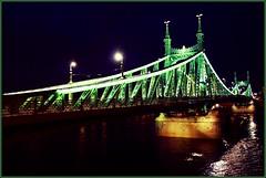 Freedom Through The Danube - Budapest - Hungary (D. Pacheu) Tags: bridge freedom hungary budapest pont danube freedombridge hongrie libertybridge pontdelalibert szabadsgbridge pacheu