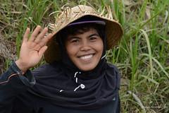 20150913145834.jpg (Marisa y Angel) Tags: bali ricefields paddyfields 2015 jatiluwih camposarroz