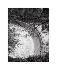 Guyzance Weir (Kevin J Allan) Tags: monochrome 645 northumberland weir rivercoquet guyzance filmfomapan100 filmformat120 camerafujifilmga645zi filmdevelopertmaxdeveloper6m24cjobo