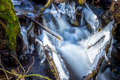 Vinterbcken (Joakim Berndes) Tags: longexposure trees ice water river is vinter forrest outdoor natur adobe skog sverige vatten hdr trd lightroom februari bck vatt utomhus tystberga lngexponering fotosondag fs160228