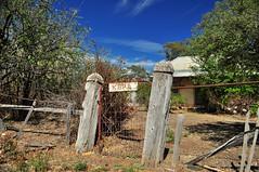 Welcome home, Kara! (HOLLY HOP) Tags: home nature rural kara fence garden decay rustic bluesky victoria derelict ruraldecay rustyandcrusty gardengate hff centralvictoria tarnagulla fencefriday
