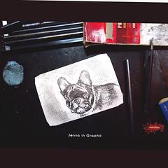 JeannaGRaphit_fuer10x15 (wandklex Ingrid Heuser freischaffende Künstlerin) Tags: hund etsy etsyshop dawanda auftragsmalerei wandklex wandkleks wandklecks etsyresolution2016 etsyresolutionde