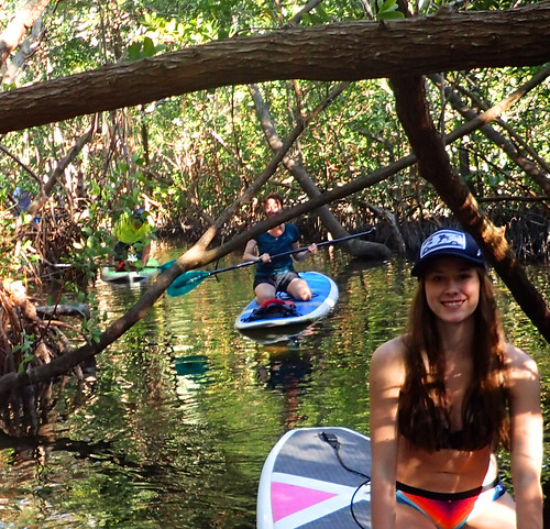 2_17_16 Kayak Paddleboard Tour Sarasota FL 32