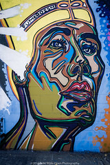 New York Street Art (jomak14) Tags: streetart newyork panasonic queens astoria g2 fumero microfourthirds wellingcourtmuralproject lumixgvario1442f3556 grafstract