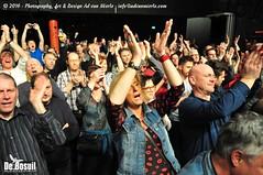 2016 Bosuil-Het publiek bij Bail en King King 10