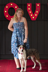 IMGP3003 (www.stevebarnes.photography) Tags: portraits australia brisbane queensland petphotographer dogphotographer