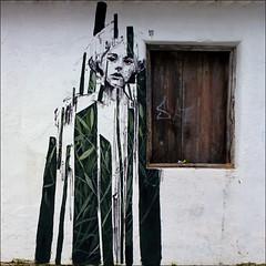 La mujer de la ventana (John LaMotte) Tags: ventana window windows graffiti janela fachada artecallejero arteurbano portugal infinitexposure lagos algarve ilustrarportugal