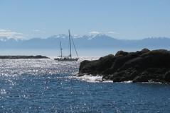 Victoria_4053F (Michael.C.G) Tags: ocean canada mountains sailboat spring britishcolumbia vancouverisland oakbay mcneillbay