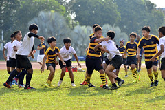 _DSC6061 (acsprugby) Tags: rugby national acs primary endeavor 2016