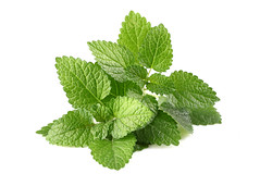 3701047209506 (legrenierdabondance) Tags: light white plant color macro green home nature leaves closeup healthy stem juice spice mint lifestyle melissa pharmacy pile medicine taste therapy herb herbal isolated peppermint ingredient republicofmoldova