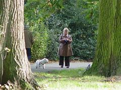 EU2006 092 (harry de haan) Tags: holland netherlands europe eu voorburg 070 harrydehaan
