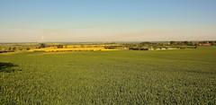 22257 (benbobjr) Tags: uk greatbritain england english unitedkingdom britain lincolnshire lincoln gb british airfield midlands eastmidlands scampton trentvalley rafscampton cottampowerstation westlindsey homedefenceflightstationbrattleby
