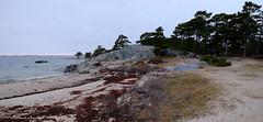 Sandhamn Island, Stockholm archipelago (claude.lacourarie) Tags: sea mer port island sweden stockholm harbour ile sandhamn archipelago sude archipel sandn vivecasten mordensandhamn sandhamnmurders meutressandhamn