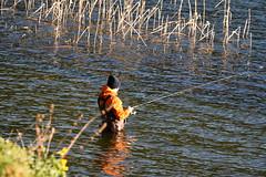 fishing (nahid mammadov) Tags: sunset sunlight fish green nature turkey daylight spring fishing hard iso nikkor bolu abant gl nikond750
