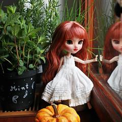 Mint Garden (KarolinFelix) Tags: green anne doll ooak redhead pullip freckles custom gables regeneration karolinfelix anneifgreengables