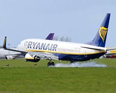 Ryanair                              Boeing 737                                 EI-FRD (Flame1958) Tags: vacation holiday flying flight landing boeing ryanair landed dub 737 dublinairport burningrubber b737 2016 0416 boeing737 eidw 070416 b7378as ryanairdelivery eifrd